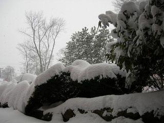 122008_winterwindow4