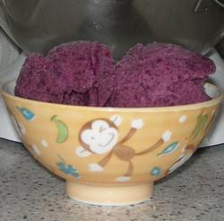 2009_grapesorbet2