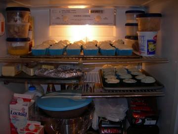 2009_parties_fridgefullofwedlock