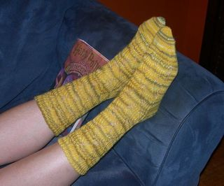 2010_hipposocks