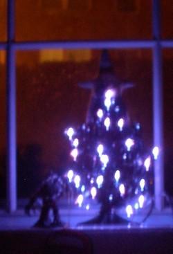 122007_treelights1
